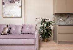 Mieszkanie zakupione za gotówkę z gdyńskiego skupu mieszkań. Na zdjęciu widać kanapę, szafę, obraz oraz roślinę w doniczce.